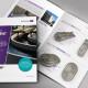 Ringstrip-Brochure-Mockup